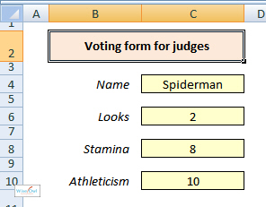 Voting form - VBA macro example