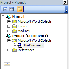 The Project Explorer in Microsoft Word