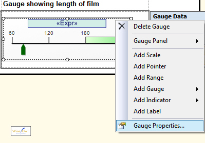 Choosing to show the gauge properties