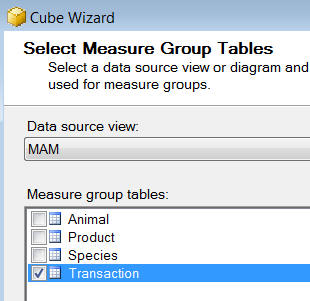 A cube's measure groups