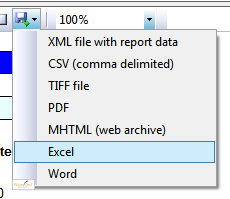 Viewing the report in Excel