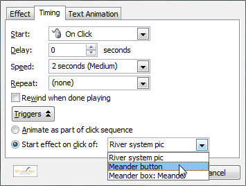 Custom animation - setting the Trigger