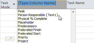 Inserting a column in Project 2010