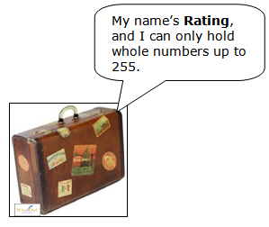 Suitcase to hold rating varaible