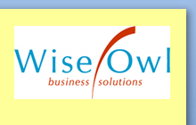 Wise Owl logo without transparency