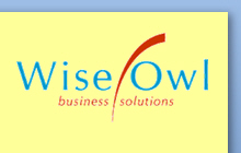Wise Owl logo with transparent yellow