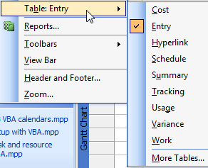 Using View menu to switch table views