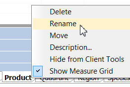 Renaming in grid view