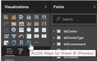 ArcGIS visual