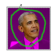 Marked area on Obama