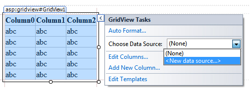 Assigning data source to gridview