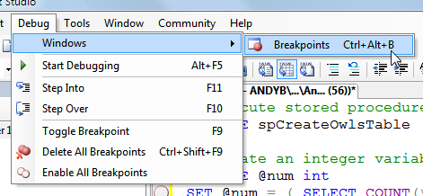 Displaying the breakpoints window
