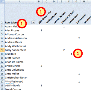 Example of pivot table in Excel
